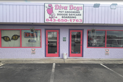 exterior, purple building with red trim, Diva Dogs Day Spa business, mirrors and brightly pained walls, playscreen TV, doggy daycare in myrtle beach