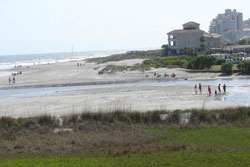 beach and sand dunes with people in the distance, pet friendly pet friendly vacation rental home rental