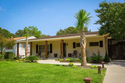 single story house with palm trees and grass yard, pet friendly pet friendly vacation rental home rental