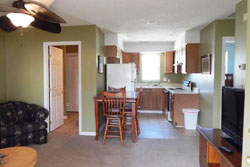 pet friendly pet friendly vacation rental home rental